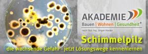 fb_Akademie-Schimmelpilz
